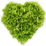lettuce love each other.